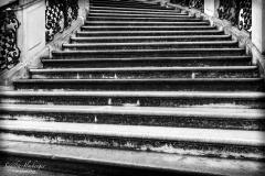 Stufe um Stufe